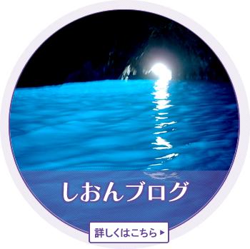 しおんブログ